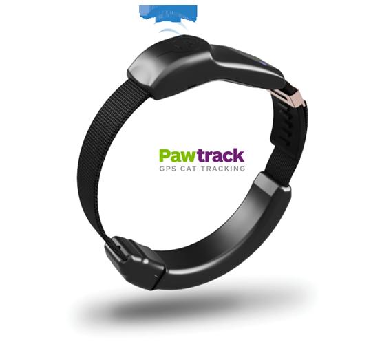 Pawtrack cat