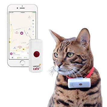 cat collar tracker