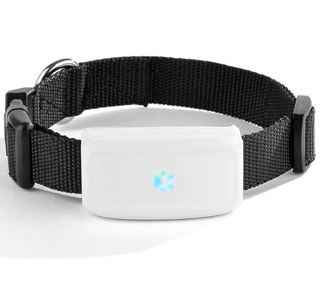 TK Star Premium GPS Cat Collar Tracker (1)