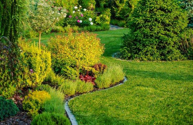 smart garden tips