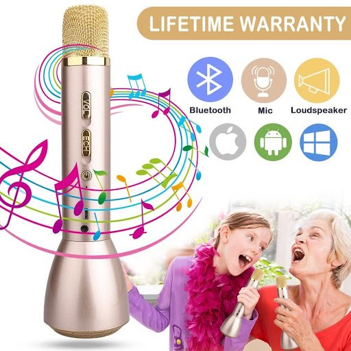 top Karaoke microphones